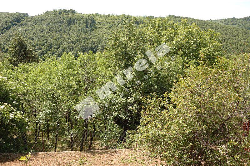For Sale House Veliko Tarnovo Region Bukovec 120 Sq M