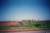 Земеделска земя в района на Дуранкулак, 18000кв.м,   € 8 /кв.м